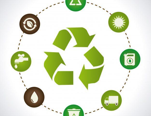 Szállítmányozás húsos ládában: miért nehéz újrahasznosítani?